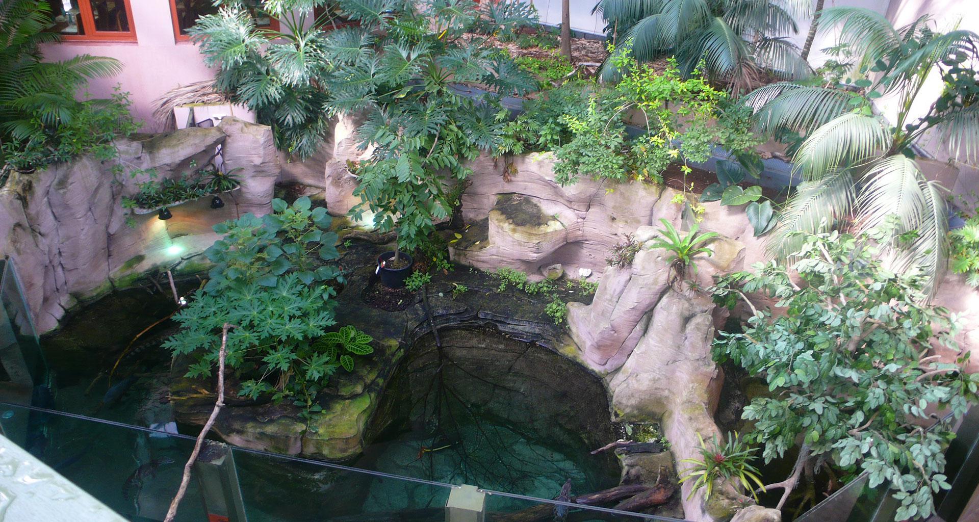 Serre amazonienne de montpellier   aab